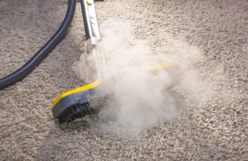 How Vapor Steam Cleaning Helps People with Allergies to Dust Mites and Molds